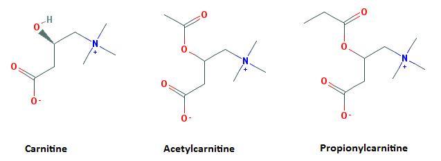 Carnitine formula